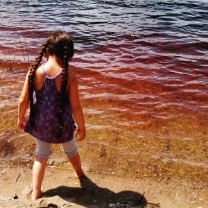 Blog - Imix water