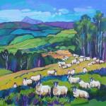 2018 – Aberfeldy herd ofsheep